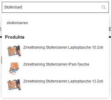 Darstellung von Produktvorschlägen im Ausklappmenü der Schnellsuche